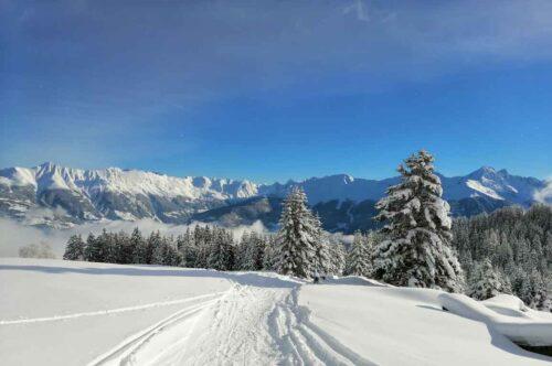 Winter-natur